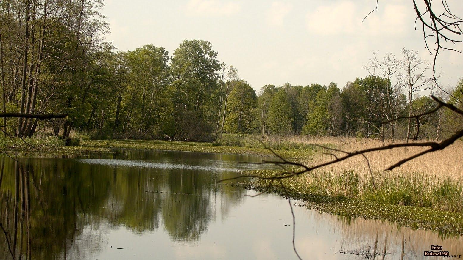 Kiełpiniec-Nabużański-Park-Krajobrazowy-27