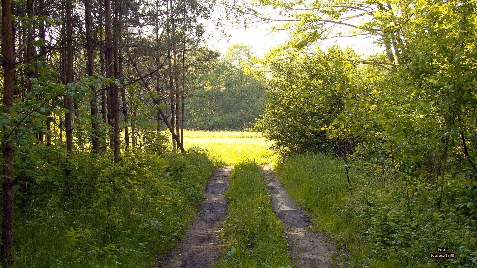 Kiełpiniec-Nabużański-Park-Krajobrazowy-77