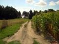 Kiełpiniec-Nabużański-Park-Krajobrazowy-10
