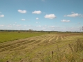 Kiełpiniec-Nabużański-Park-Krajobrazowy-22