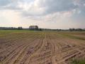 Kiełpiniec-Nabużański-Park-Krajobrazowy-29