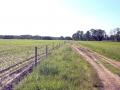 Kiełpiniec-Nabużański-Park-Krajobrazowy-40
