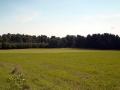 Kiełpiniec-Nabużański-Park-Krajobrazowy-49