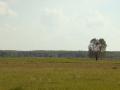 Kiełpiniec-Nabużański-Park-Krajobrazowy-51