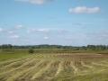 Kiełpiniec-Nabużański-Park-Krajobrazowy-59