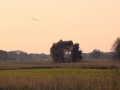 Kiełpiniec-Nabużański-Park-Krajobrazowy-60