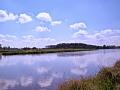 Kiełpiniec-Nabużański-Park-Krajobrazowy-96