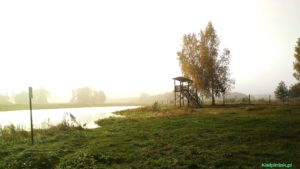 piękny poranek na wsi