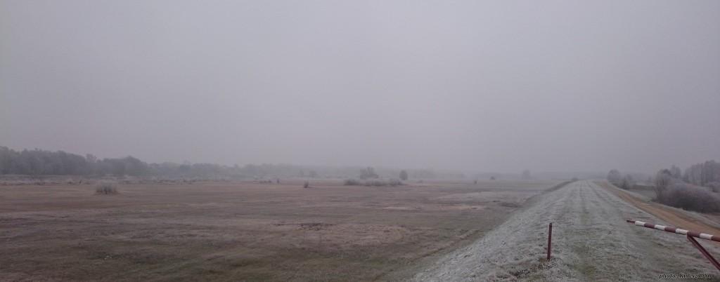 kiełpiniec mgła