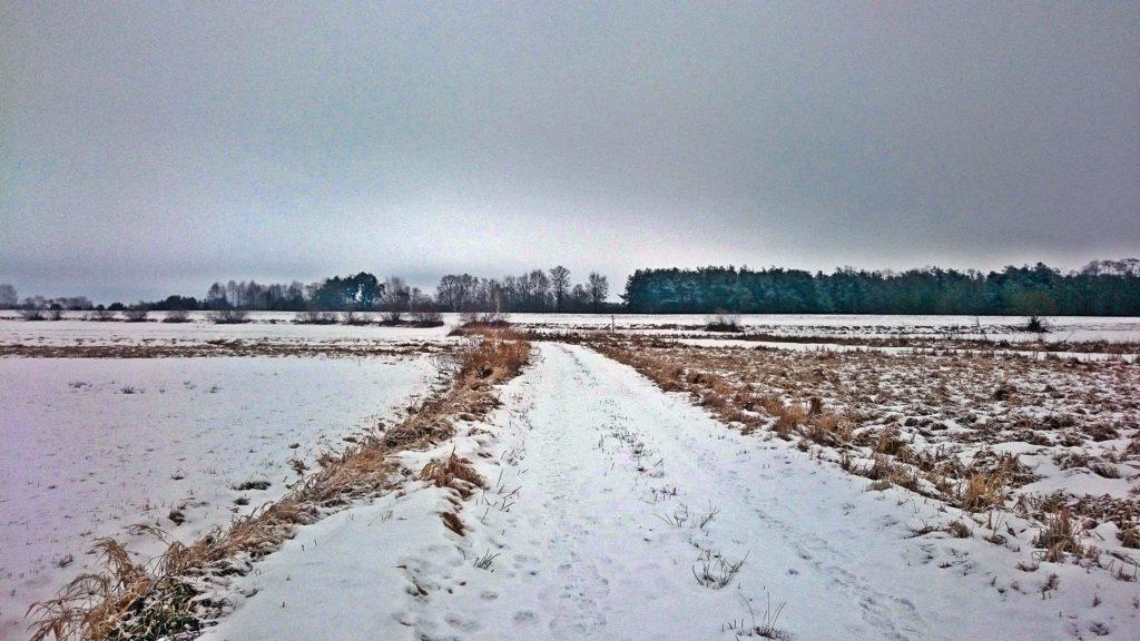 polna droga w okolicy kielpinca