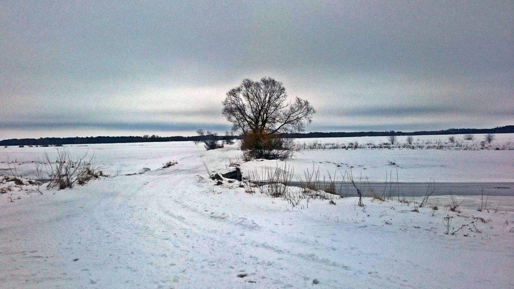 Starorzecze Bugu przy wsi Kiełpiniec