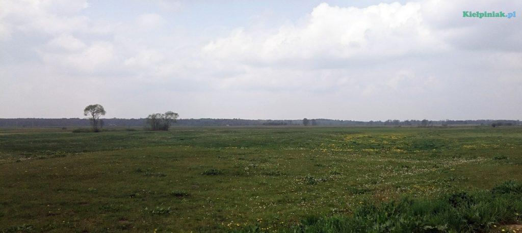 nadbużański park krajobrazowy w okolicy kiełpińca