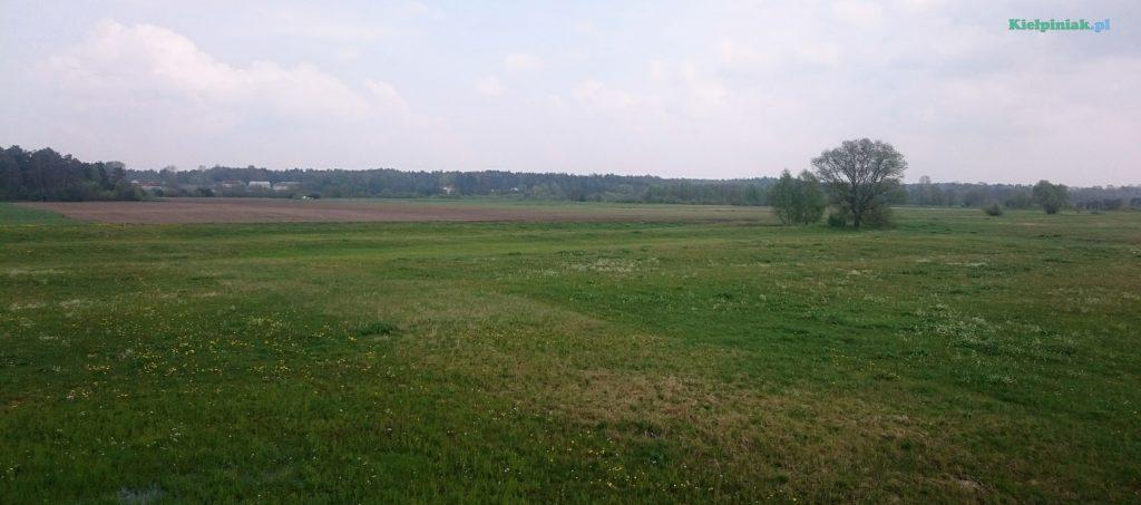 widok na pola przy zagórzu za wałem koło wsi kiełpiniec