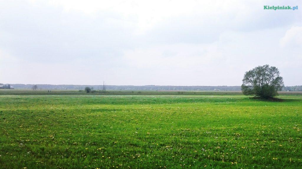 piękny widok na łąki przy wsi kiełpiniec