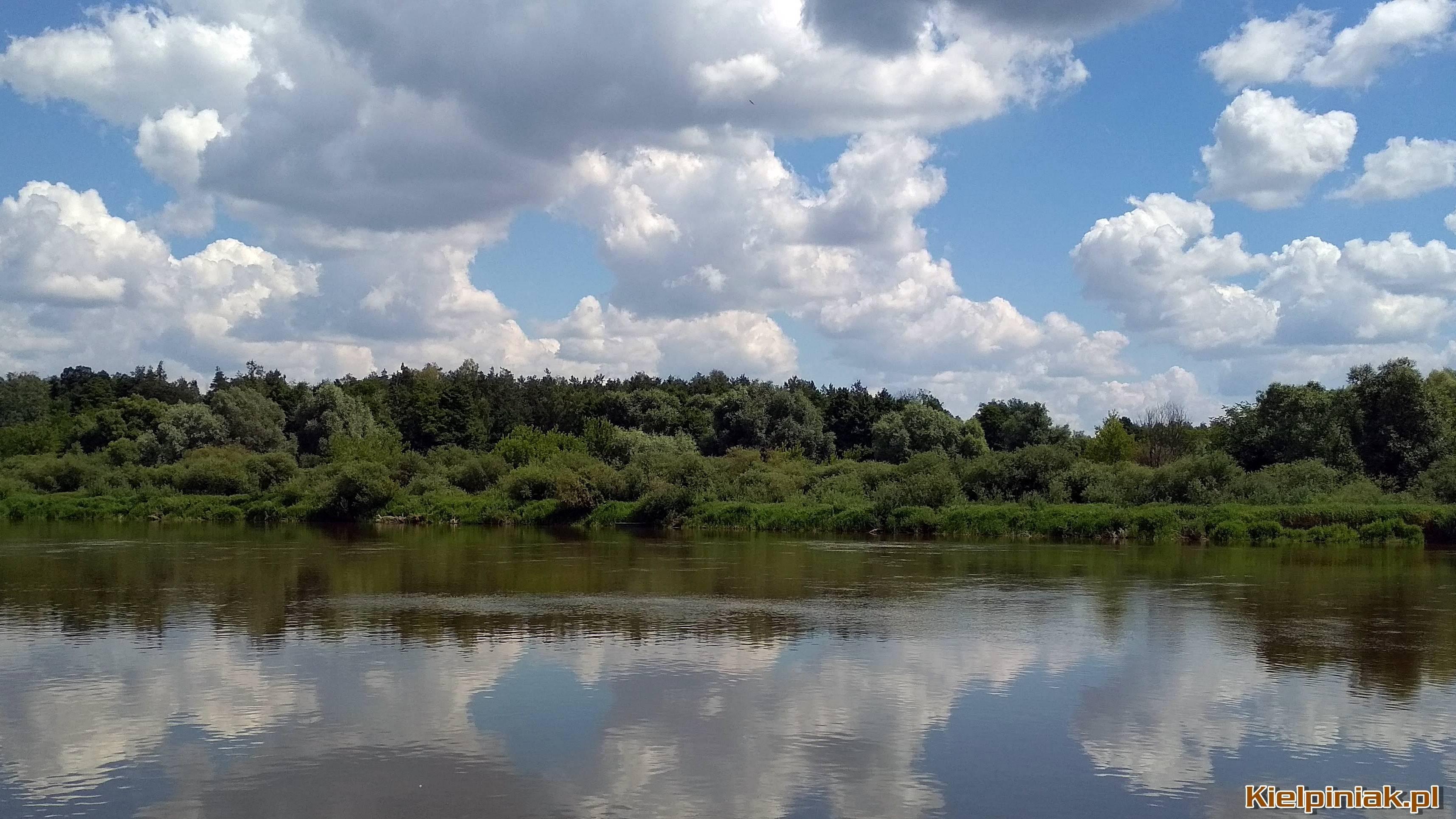 Widok na rzekę Bug od kiełpińca na Murawskie, czerwiec 2018