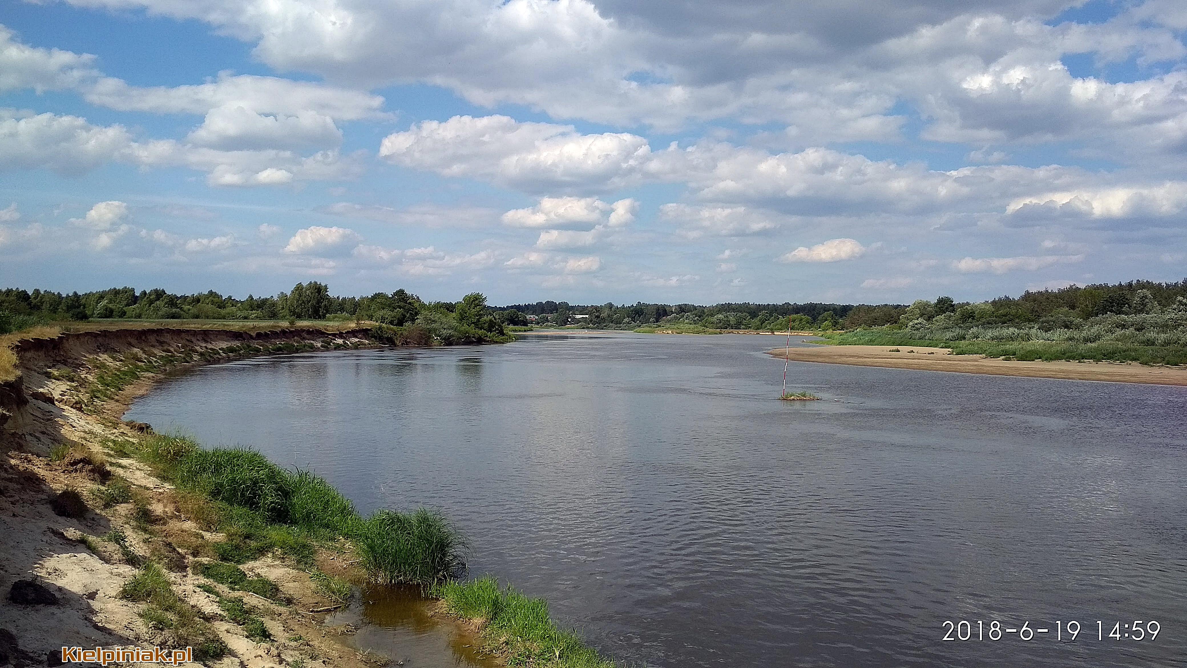 Rzeka Bug, kiełpiniec , czerwiec 2018r