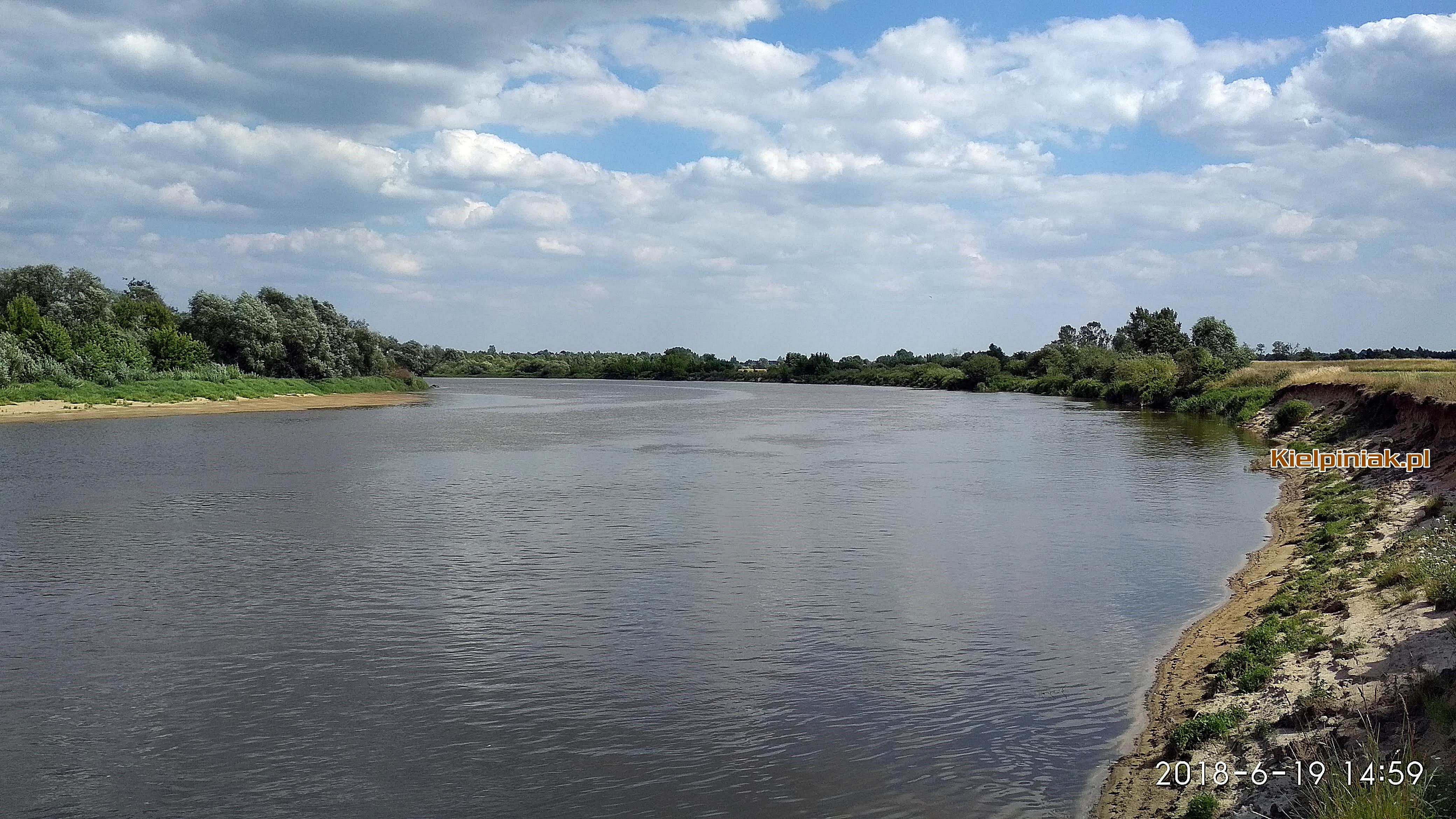 Rzeka Bug, kiełpiniec w czerwcu 2018
