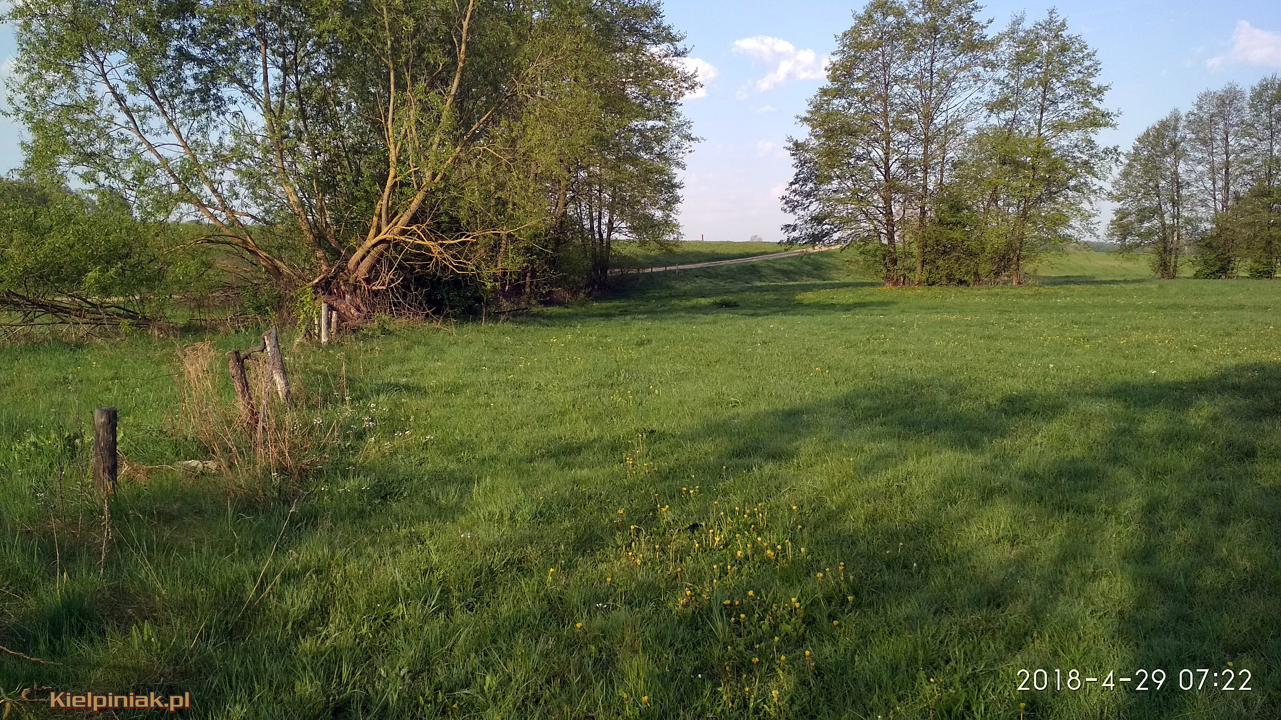 NPK Łąki przy drodze nur kiełpiniec 3