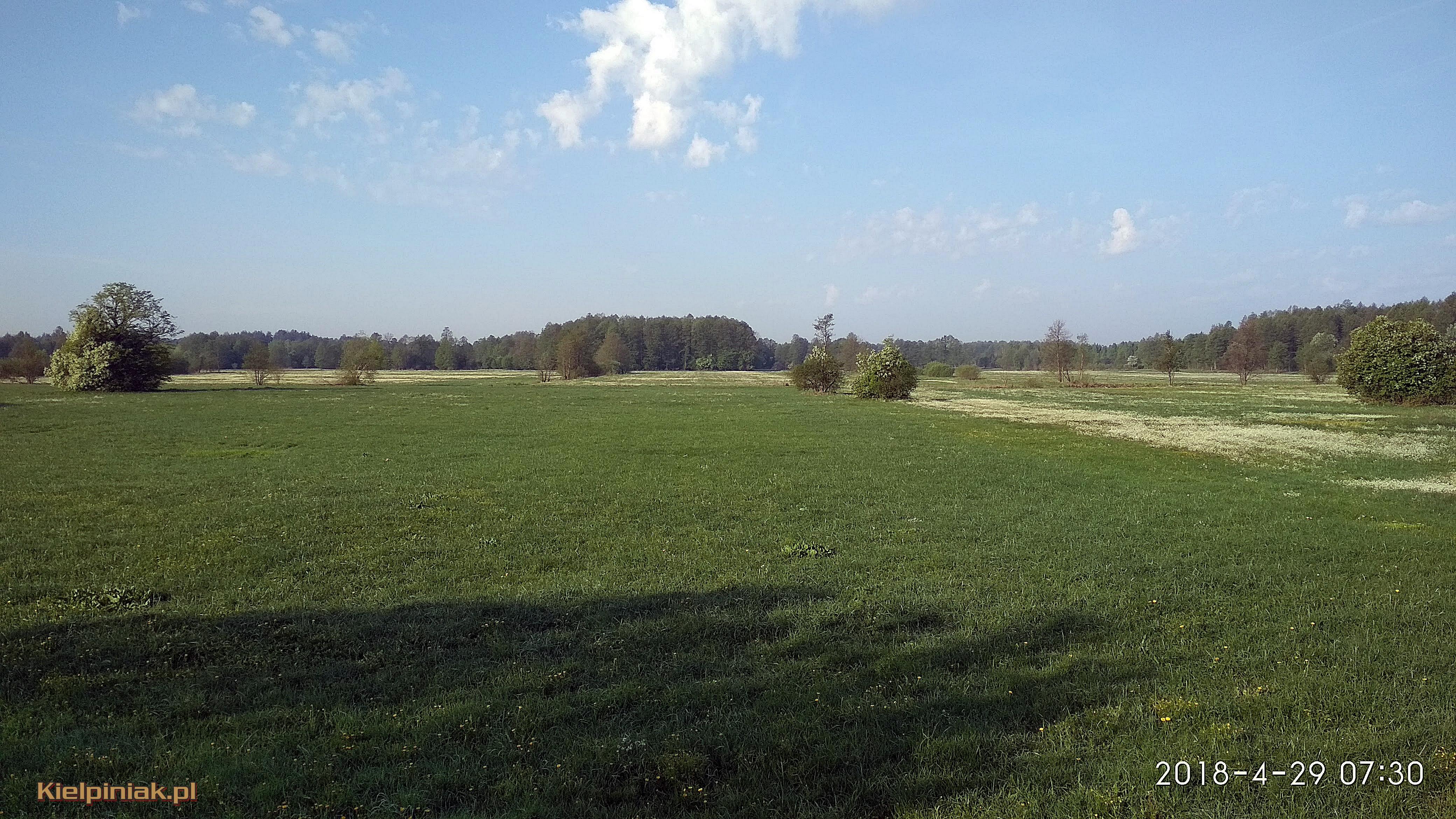 NPK Łąki przy drodze nur kiełpiniec 6