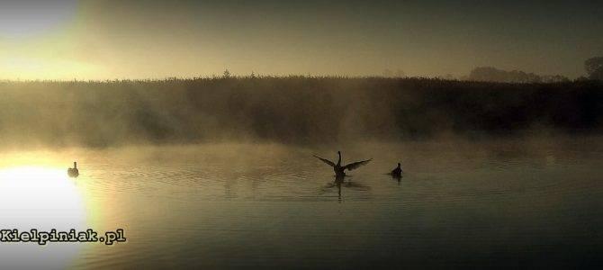 Wrzesniowe mgly w Nadbuzanskim Parku Krajobrazowym