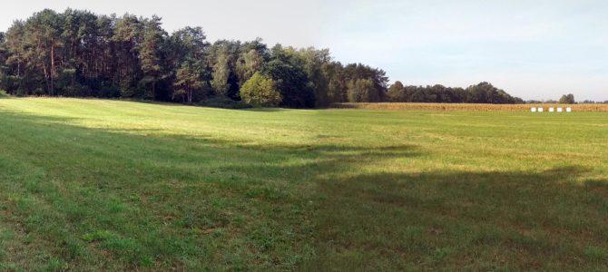 Aktywna jesień w Gminie Sterdyń