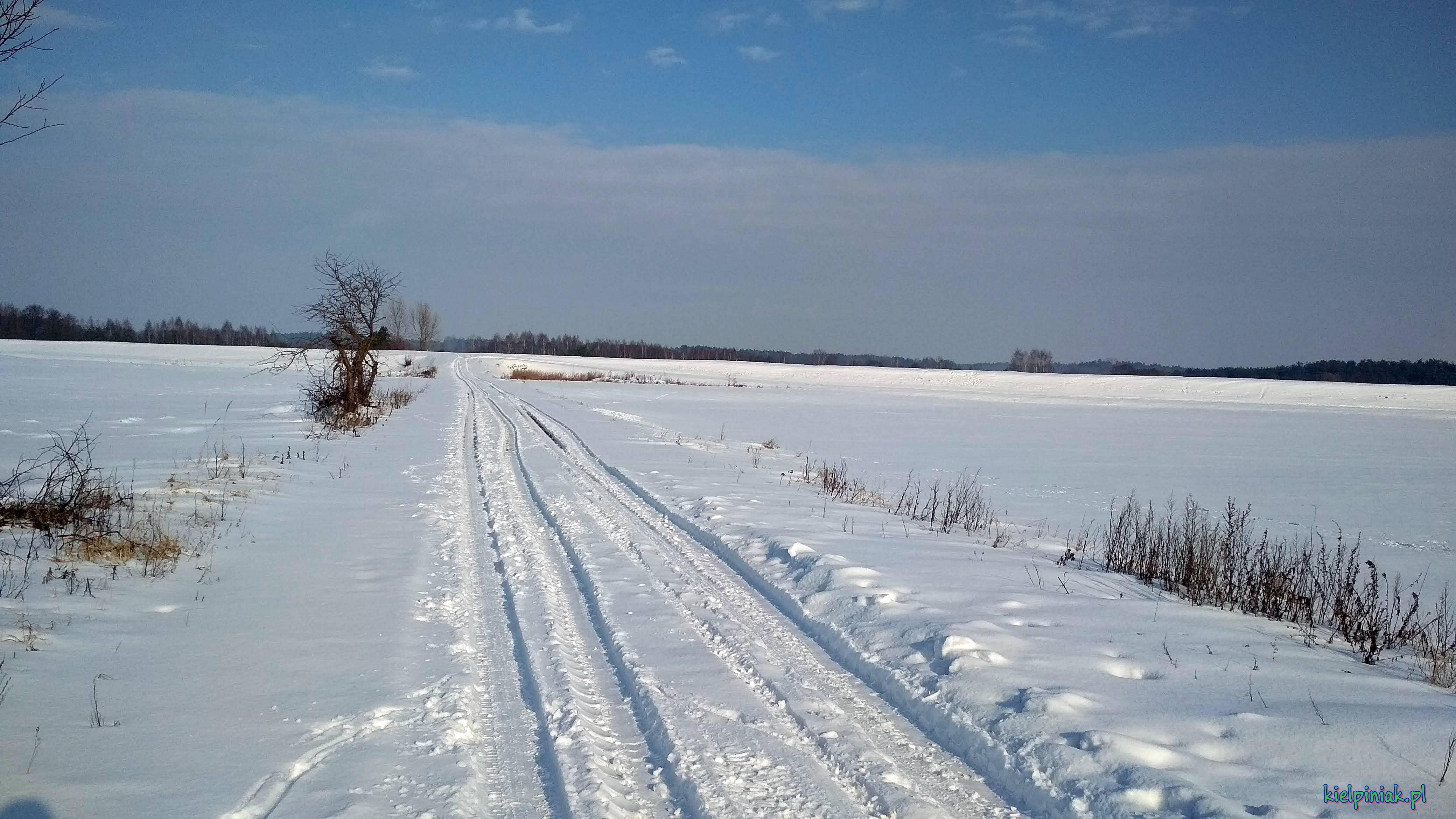 droga na wał od wsi kiełpiniec ,zima 2019