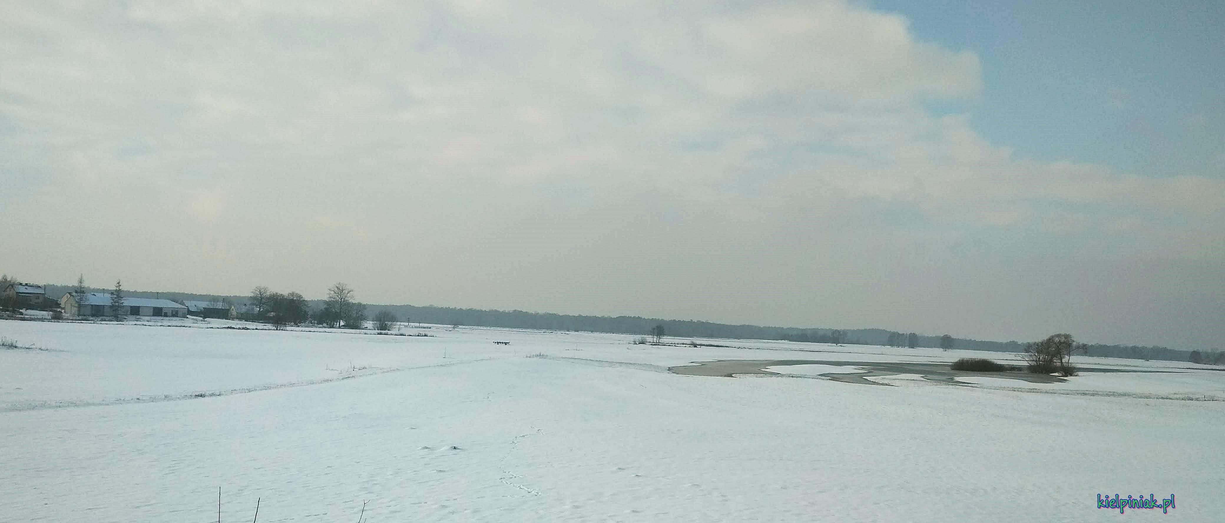zdjęcie z wału w okolicy kiełpińca, widok na olszynę/ ulaski