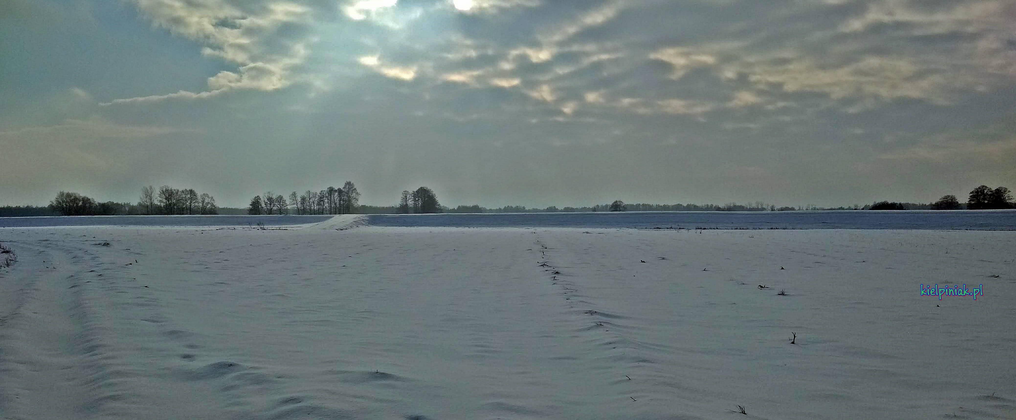 Nad Bugiem, widok na wal w okolicy wsi Kiełpiniec zima 2019