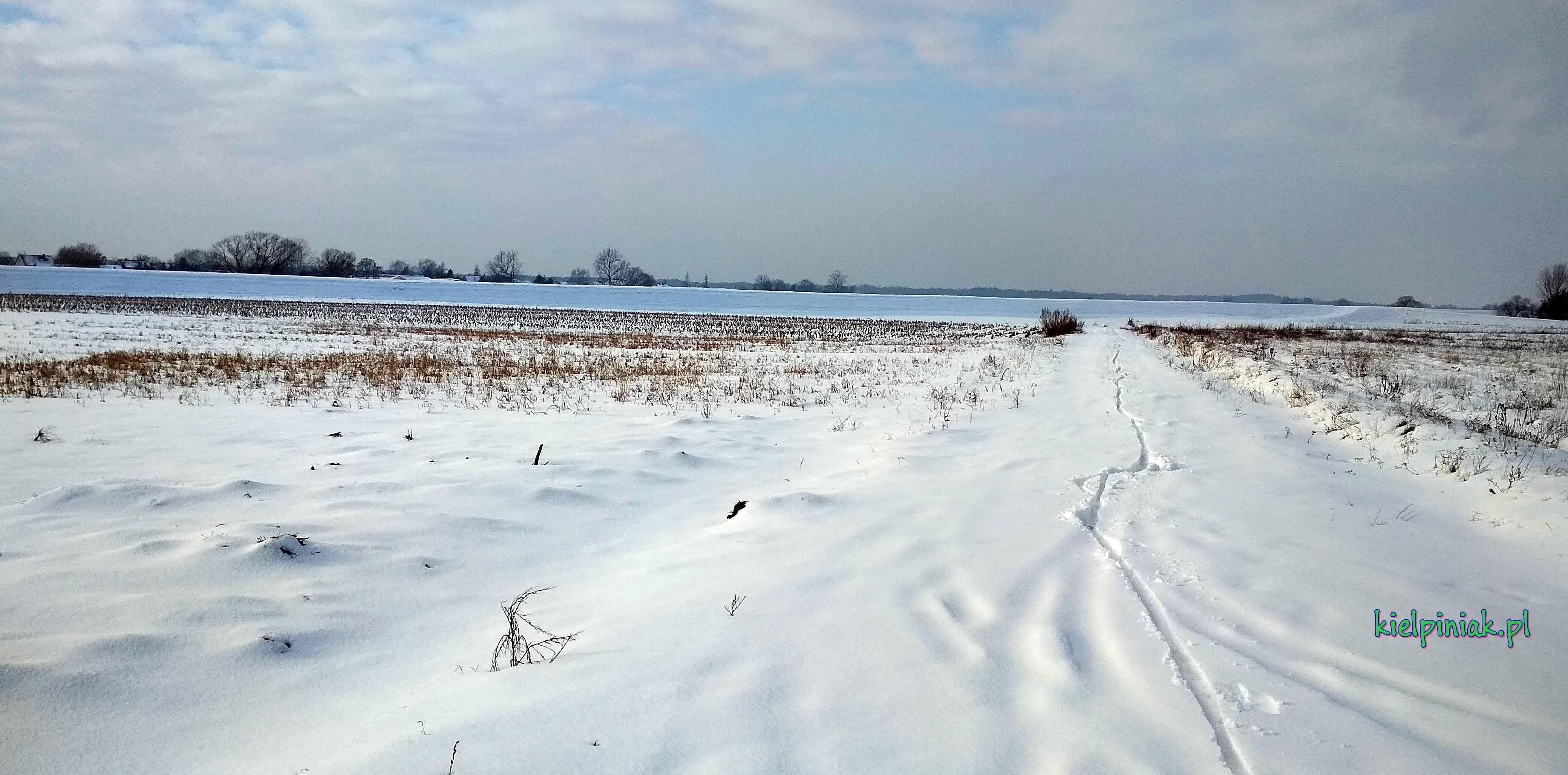 droga przy Bugu zima 2019