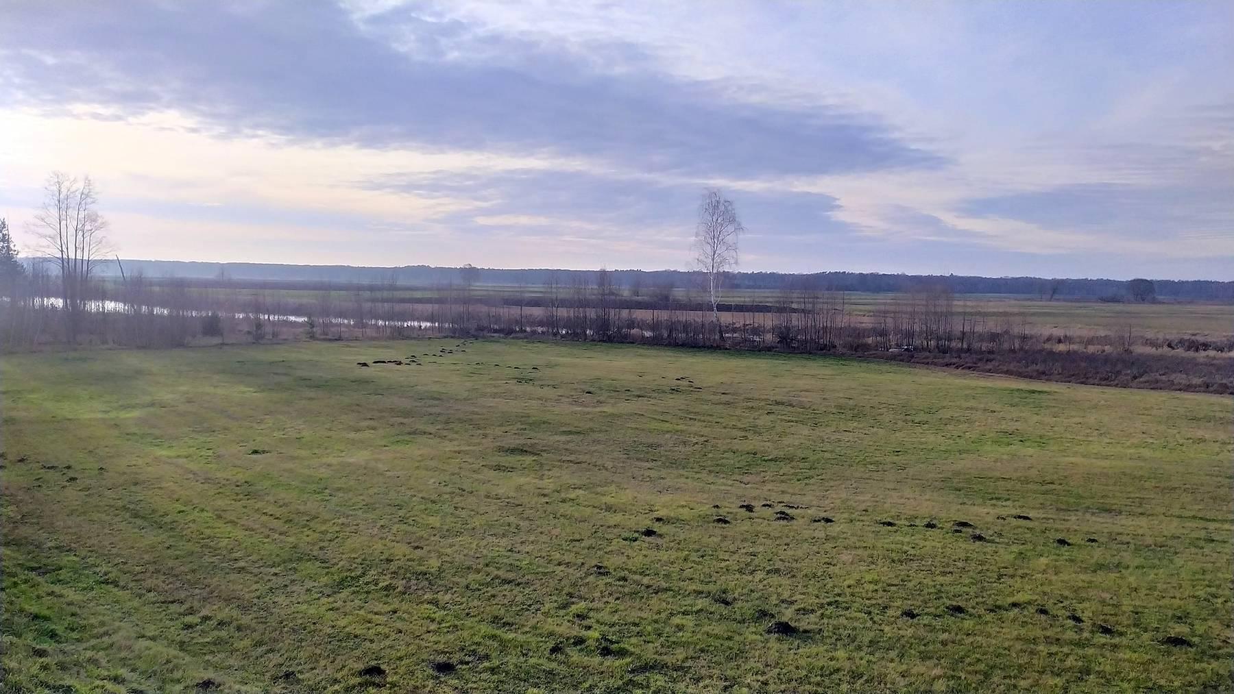 jezioro na zagórzu w kiełpińcu grudzień 2019