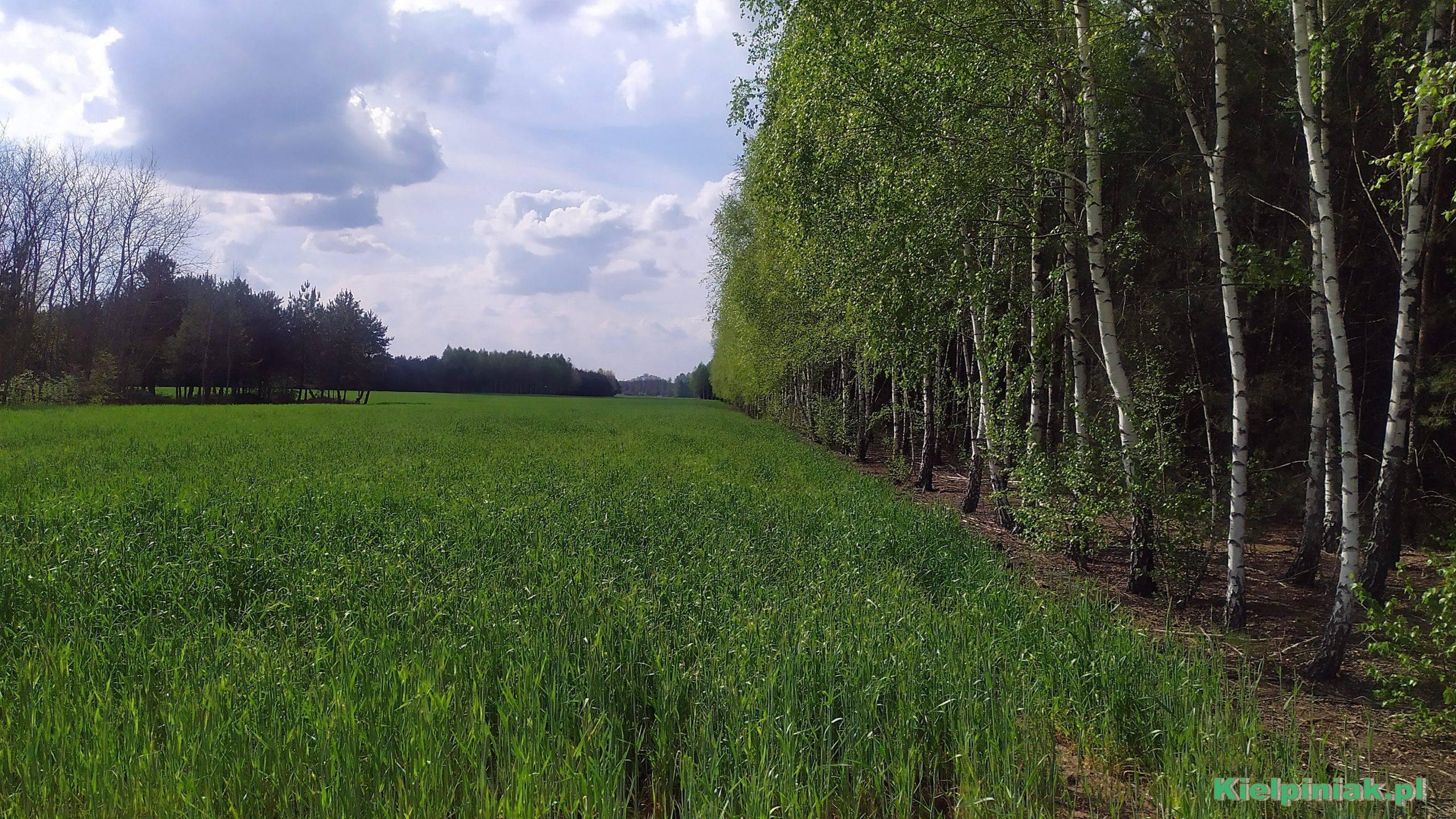 Nadbużański park Krajobrazowy maj 2020
