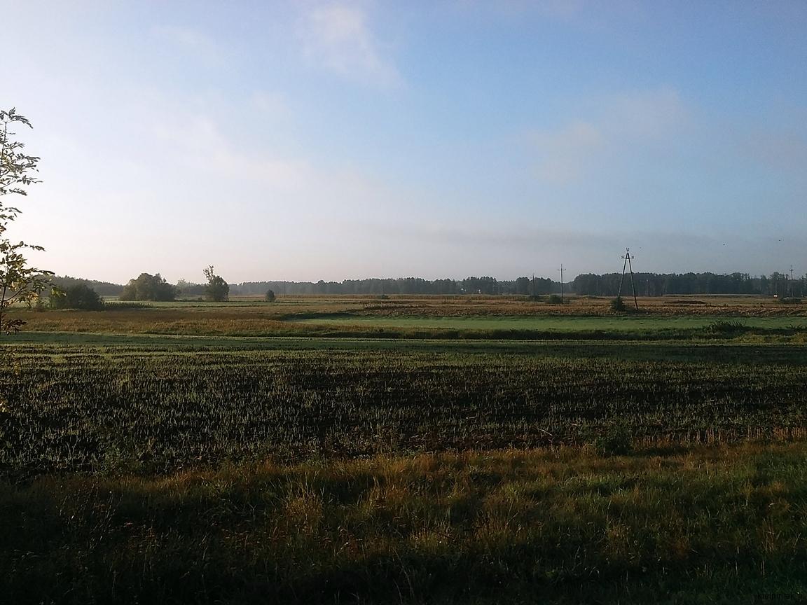 wrzesniowy poranek kiełpiniec