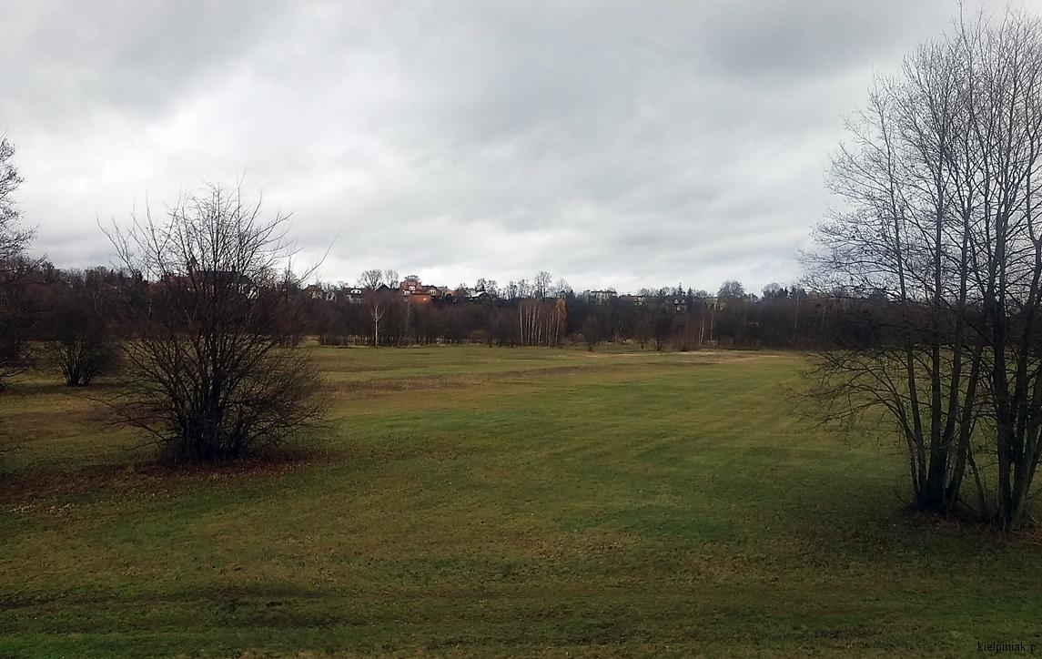 pola i łąki zdjęcia