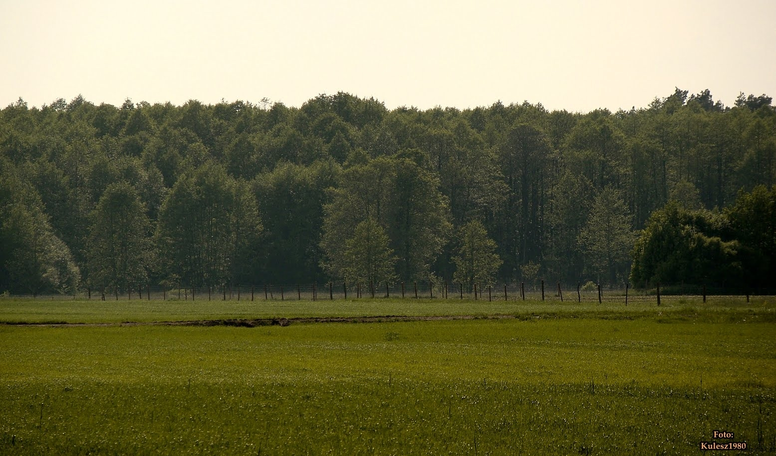 Kiełpiniec-Nabużański-Park-Krajobrazowy-14