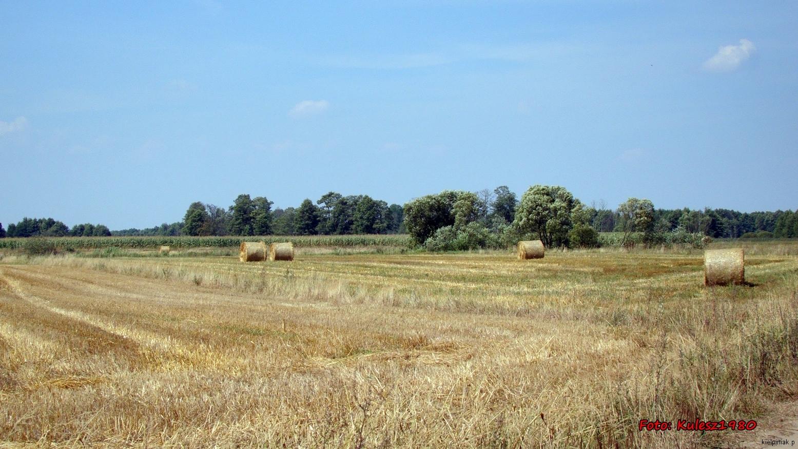 Kiełpiniec-Nabużański-Park-Krajobrazowy-19