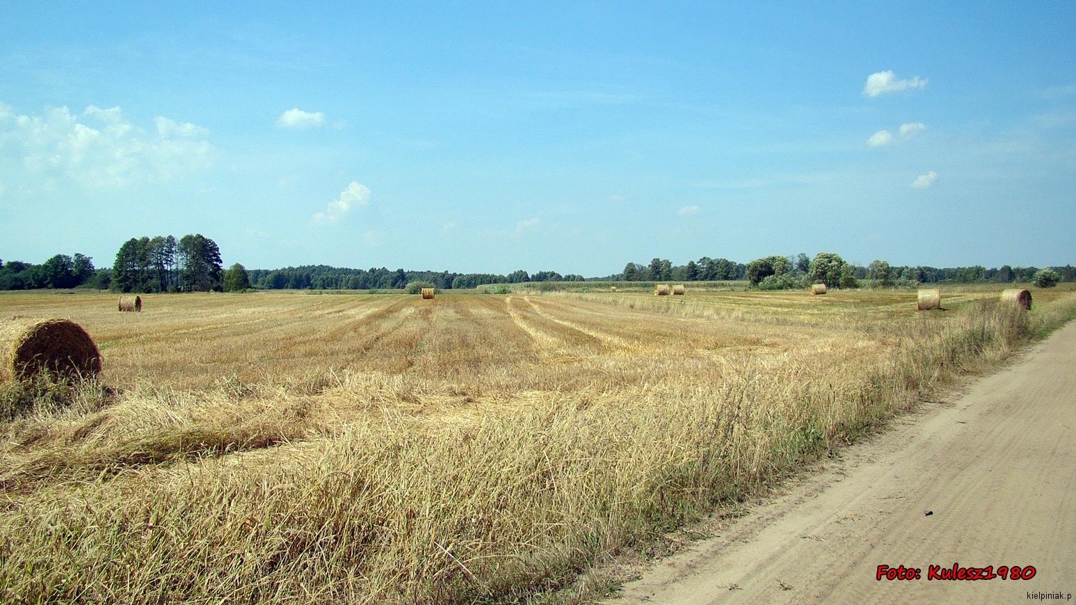 Kiełpiniec-Nabużański-Park-Krajobrazowy-45