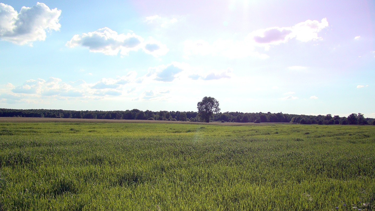 Kiełpiniec-Nabużański-Park-Krajobrazowy-58