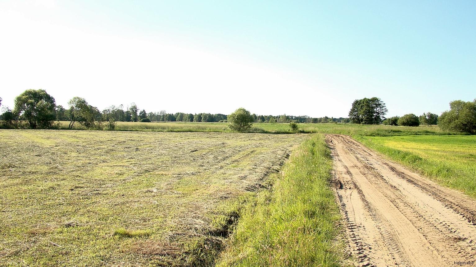 Kiełpiniec-Nabużański-Park-Krajobrazowy-65