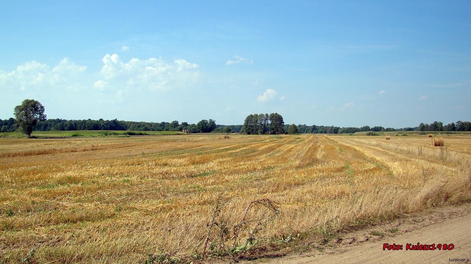 Kiełpiniec-Nabużański-Park-Krajobrazowy-78