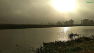 kiełpiniak pl nad jeziorem