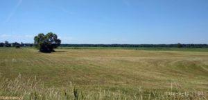 pola i łąki , Nadbużański Park krajobrazowy, wieś kiełpiniec