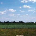 Ulaski koło wsi kiełpiniec, widok na łąki w stronę wsi