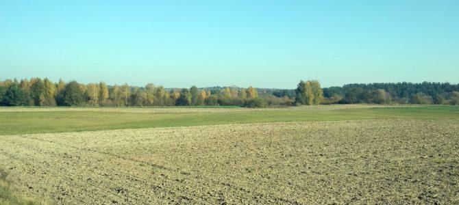 Kolory jesieni w Nadbuzanskim Parku Krajobrazowym